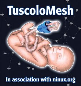 nuovo logo tuscolomesh